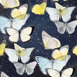 Butterflies in Starry Night Sky