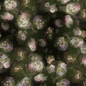 Dewy Roses