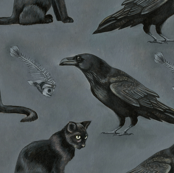 Cats and ravens