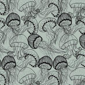 crazy_jellyfish