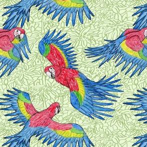 Macaw Fabric