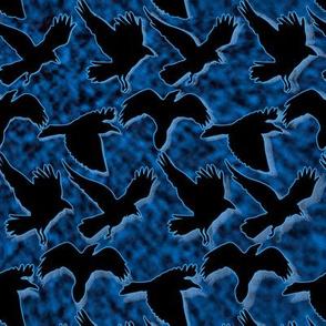 Ravens Fly at Night