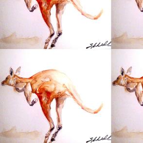 Big Red Kangaroo by Liz Lovell