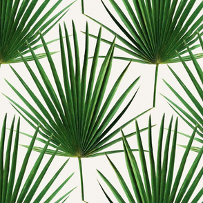 Simple Palm Leaf Geometry green and cream large print