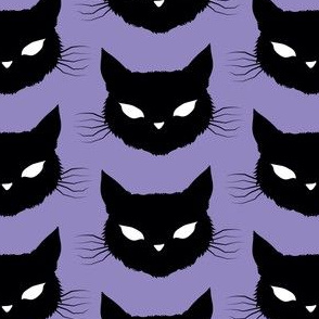 bats, cats, and spiders! cats