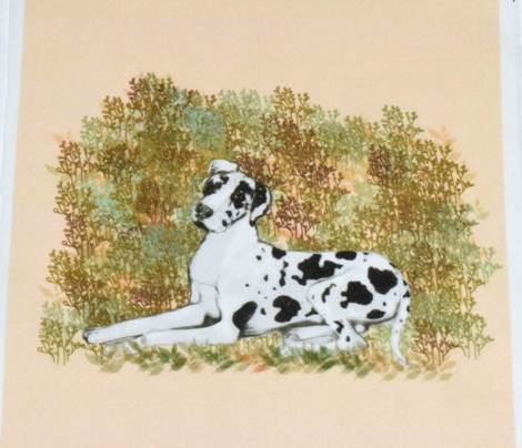 Harlequin Great Dane for Pillow