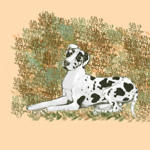 Harlequin Great Dane for Pillow