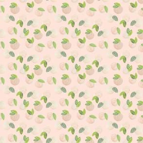 Sweet Peach Pantone 48-1 // Small