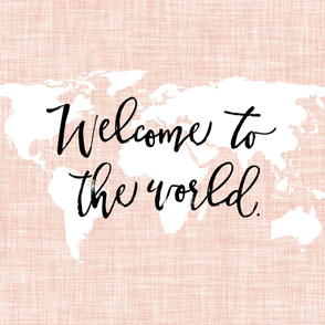 Welcome To The World Baby Blanket // Pale Pink Linen