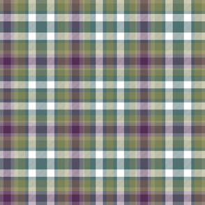 Virginia state tartan #1, weathered