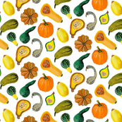 Pumpkin, Squash and Gourds