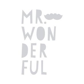 mr. wonderful grey mod baby » plush + pillows // fat quarter