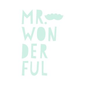 mr. wonderful mint light mod baby » plush + pillows // fat quarter