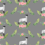 Showstock & Roses - Lamb