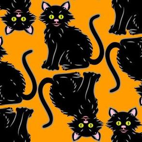 Halloween Kitten orange