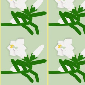 Lily Border Alternative