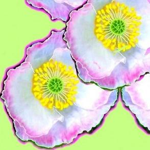 Mara's Poppies 2