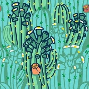 owl + saguaro in dew + robin