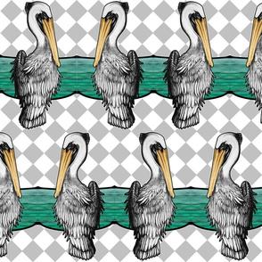 Pelican_Ocean_Fishing