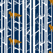 Into the woods -Fox // on navy