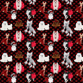 Red Leopard Hearts - Yorkie, Shihtzu, Maltese, Chihuahua, Crested
