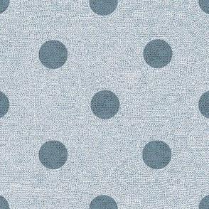 Denim Sky with Slate Dots