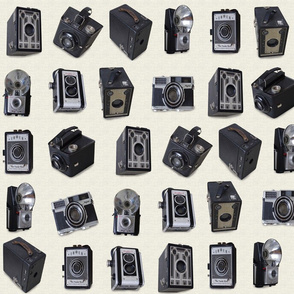 Floating Antique Cameras