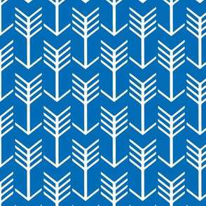 Arrows Blue and White