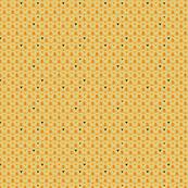 Orange Drop Spider
