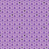 Purple Drop Spider