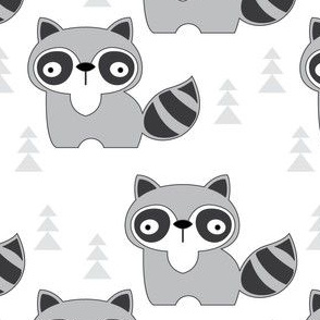 raccoons-on-white