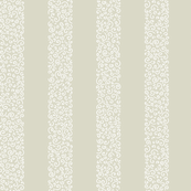 small ammonite stripes - white on bisque