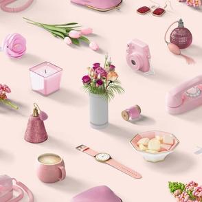 Girl's Pink Dream