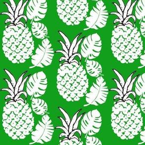 Pineapple Leaves