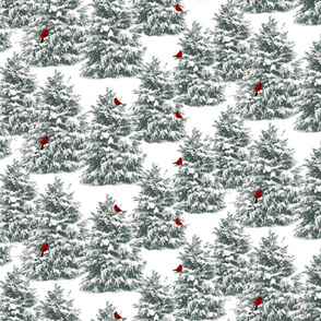 SnowyBranches
