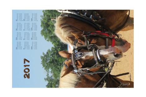R2017_tea_towel_calendar_work_horses_ii_contest127680preview