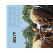 R2017_tea_towel_calendar_work_horses_ii_shop_thumb