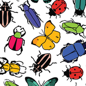 Hand Drawn Colorful Bugs/Insects