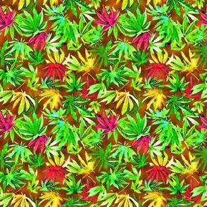Tropical Cannabis Leaves