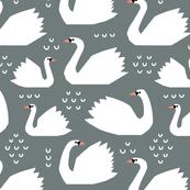 swans - stone