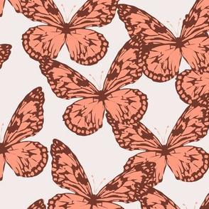 bebe_butterfly