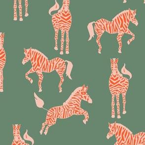 bebe_zebra