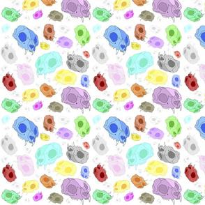 jelly bean cat skulls