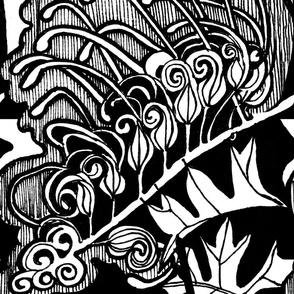 Grevillea  Bipinnatifida Fushia