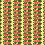 Rows_of_Zinnias_2-