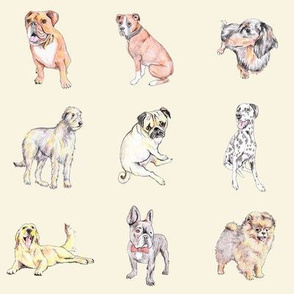 Dogs on cream (medium)