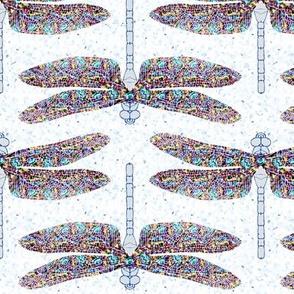 dragonfly shimmer