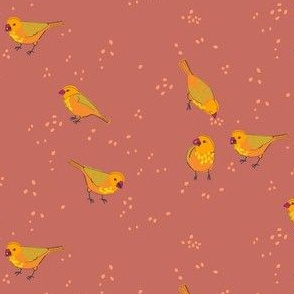collective: charm of finches 4