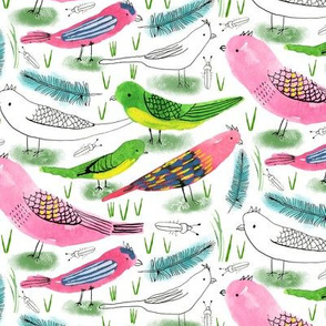 Silverton Birds