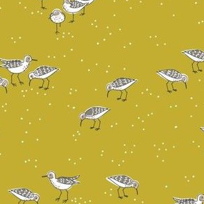 collective: fling of sandpipers 1  [yarrow]